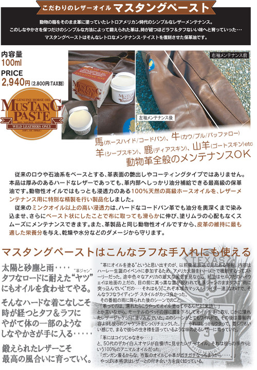 Mustangpaste001_2