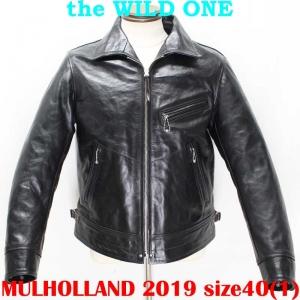 Mulholland201940ai001