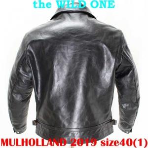 Mulholland201940ai002