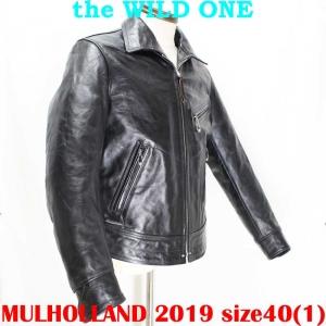 Mulholland201940ai003