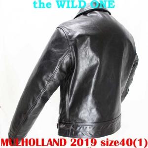 Mulholland201940ai004