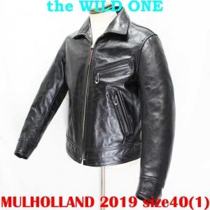 Mulholland201940ai005