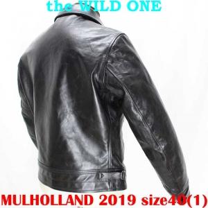 Mulholland201940ai006