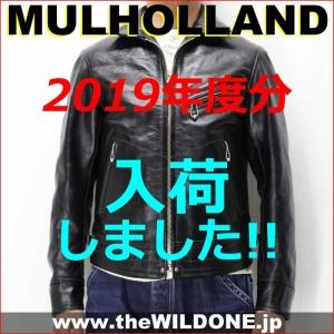Mulholland2019c01001