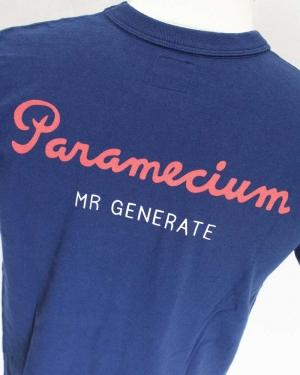 Parameciumnavya022