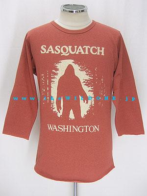 Sasquatch8_rust_001