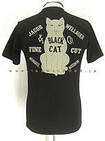 Blackcat_black_0001
