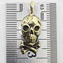 Skullbrass_a00001
